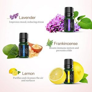 Anjou Essential Oils Set Top 9 Pack 100% Pure Aromatherapy Oil Kit, Include Lavender, Bergamot, Sage, Grapefruit, Palmarosa, Cinnamomum and More_5e1e7485e7af5.jpeg