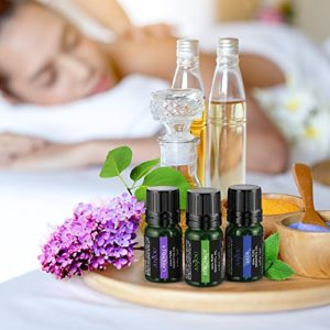 Anjou Essential Oils Set Top 9 Pack 100% Pure Aromatherapy Oil Kit, Include Lavender, Bergamot, Sage, Grapefruit, Palmarosa, Cinnamomum and More_5e1e74894514e.jpeg