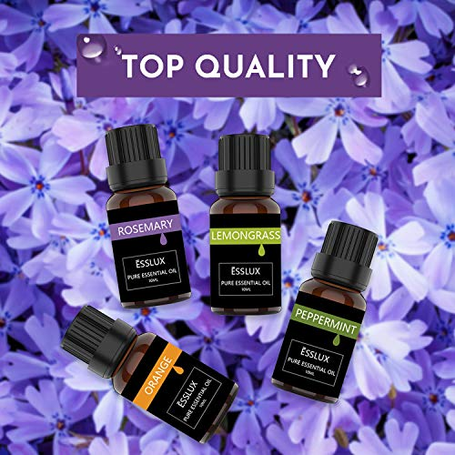 Essential Oils Set, ESSLUX TOP 6 Aromatherapy Essential Oils: Lavender, Tea Tree, Orange, Rosemary, Lemongrass, Peppermint Essential Oil_5e27aa8b53576.jpeg