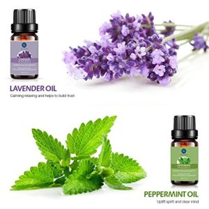 Lagunamoon Essential Oils Top 6 Gift Set  Pure Essential Oils for Diffuser, Humidifier, Massage, Aromatherapy, Skin & Hair Care_5e1e72ff0d5da.jpeg