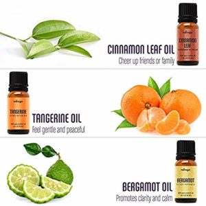 Natrogix Nirvana Essential Oils – Top 18 Essential Oil Set 100% Pure Therapeutic Grade 18/10ml Incl. (Tea Tree, Lavender, Lemon, Rosemary And 14 More) Made in USA w/Free E-Book_5e1e7519f3fae.jpeg