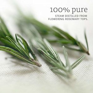 Now Essential Oils, Rosemary Oil, Purifying Aromatherapy Scent, Steam Distilled, 100% Pure, Vegan, 4-Ounce_5e18f149cd0a4.jpeg