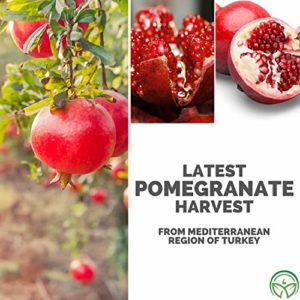 Organic Pomegranate Seed Oil – Pure Unrefined Cold Pressed Essential Oil. Unclog Pores, Remove Dirt, Acne From Skin. Nourishes Hair and Scalp. Natural Antioxidant Moisturizer (1 Fl Oz)_5e19f20c377a6.jpeg