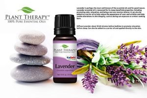 Plant Therapy Lavender Essential Oil 100% Pure, Undiluted, Natural Aromatherapy, Therapeutic Grade 100 mL (3.3 oz)_5e19f17376ba4.jpeg
