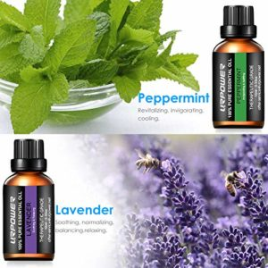 URPOWER Essential Oils Top 8 Aromatherapy Essential Oils 100% Pure Therapeutic Grade Essential Oils Set Lavender/Peppermint/Tea Tree/Orange/Eucalyptus/Lemongrass/Frankincense/Rosemary_5e18f6a7a2b01.jpeg