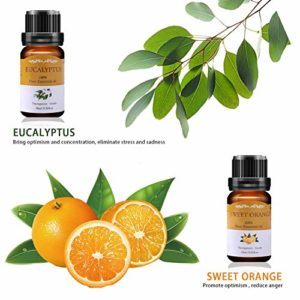 VSADEY Essential Oils Set, Top 6 Aromatherapy Essential Oils for Diffuser, Massage, Skin and Hair Care – Sweet Orange, Lavender, Tea Tree, Peppermint, Lemongrass, Eucalyptus 100% Pure, 6 x 10ml_5e18f62a386e3.jpeg
